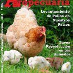 Revista Actualidad Agropecuaria - Edición Noviembre 2018