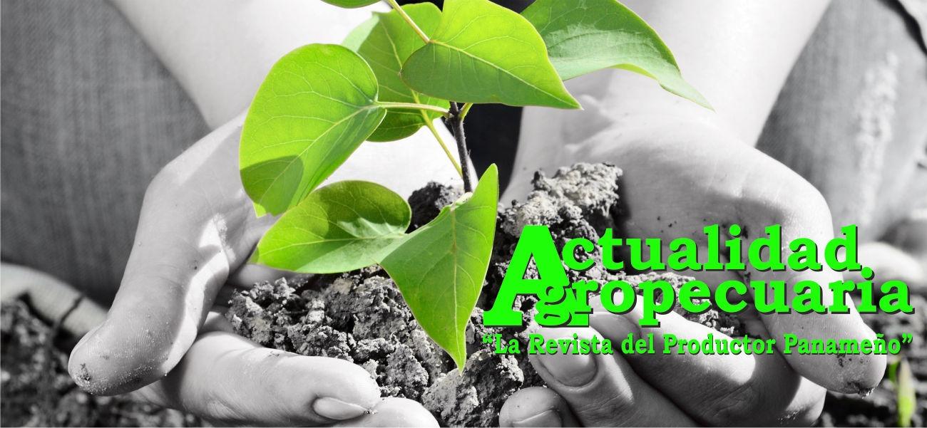 Revista Actualidad Agropecuaria