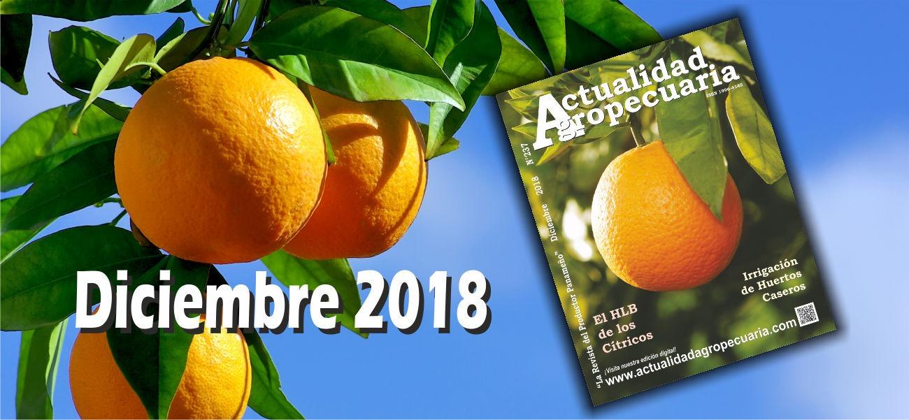 Revista Actualidad Agropecuaria Diciembre 2018