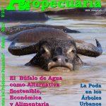 Revista Actualidad Agropecuaria - Edición Febrero 2019