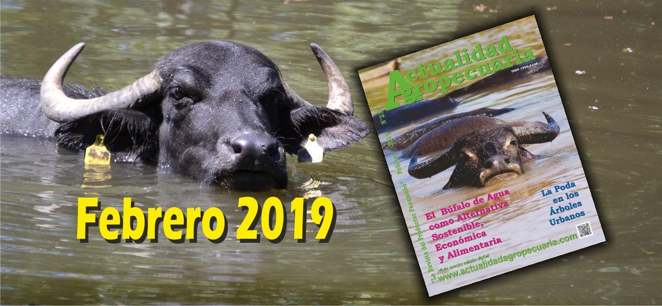 Revista Actualidad Agropecuaria Febrero 2019