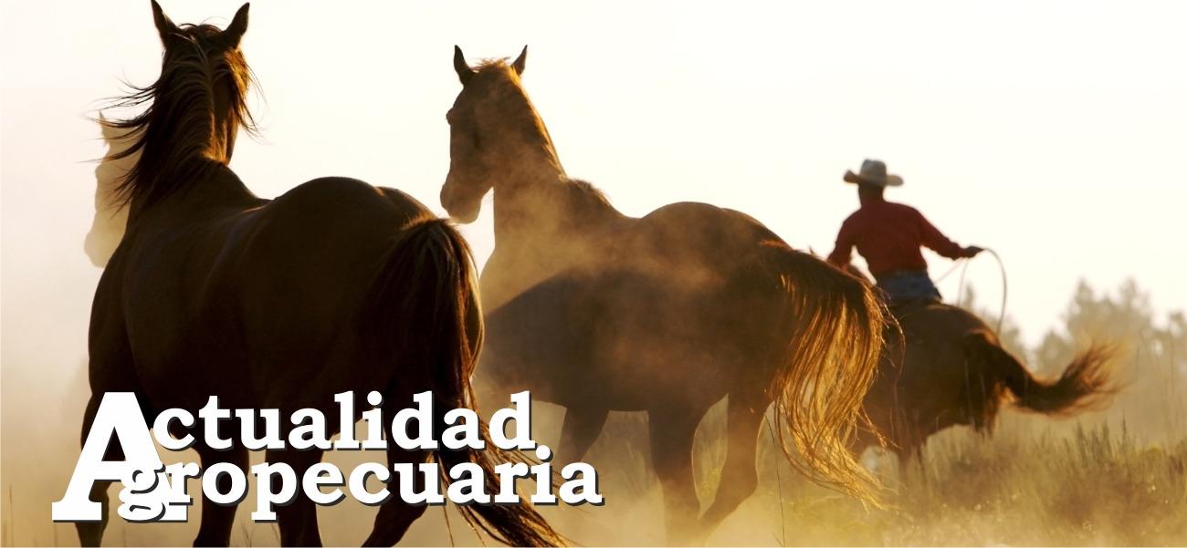 Revista Actualidad Agropecuaria marzo 2019