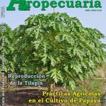 Revista Actualidad Agropecuaria - Edición  Mayo 2019