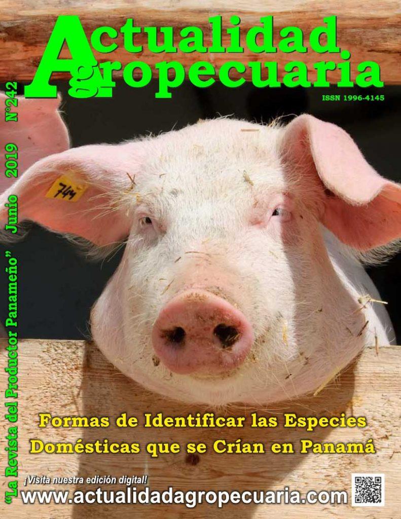 Revista Actualidad Agropecuaria Junio 2019