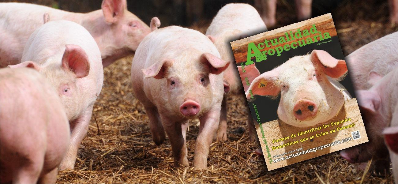 Revista Actualidad Agropecuaria junio de 2019