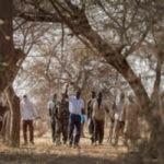 Un tesoro desconocido: nuevo informe de la FAO