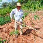 El Fondo Verde para el Clima Aprobó un Proyecto de Resiliencia Climática en Cuba de USD $ 119 millones