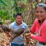 Centroamérica prepara Plan de Recuperación, Reconstrucción Social y Resiliencia ante la COVID-19.