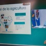 """El IICA en el Congreso anual de MAIZAR: """"La agricultura es la clave para la reactivación económica de la región"""""""