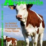 Revista Actualidad Agropecuaria Octubre 2020