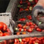 PROCAGICA fortalece infraestructura para el despulpado húmedo de café en municipios de Nicaragua