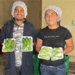 MIPYMES centroamericanas contarán con apoyo para la facilitación del comercio agroalimentario, innovación y tecnología