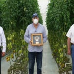Banco Nacional de Panamá promueve producción sostenible de hortalizas en segundo Día de Campo Virtual