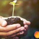 UPL firma un acuerdo plurianual con Soil Health Institute para impulsar la innovación en la agricultura