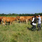 Las proteínas de origen animal son esenciales para una alimentación nutritiva y saludable y los más pobres deben tener acceso a su consumo